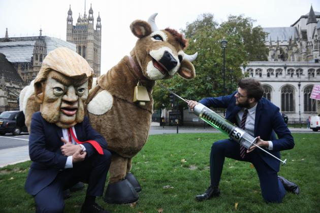 top the US Trade Deal protest in Parliament Square. A pantomime cow with a business man and a Trump look-alike pretending to inject it with hormones. Photo: Kristian Buus.